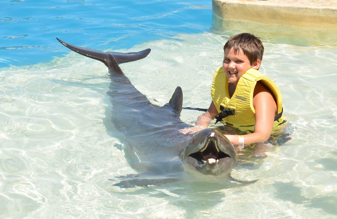 Disfruta de Tulum + nado con delfines