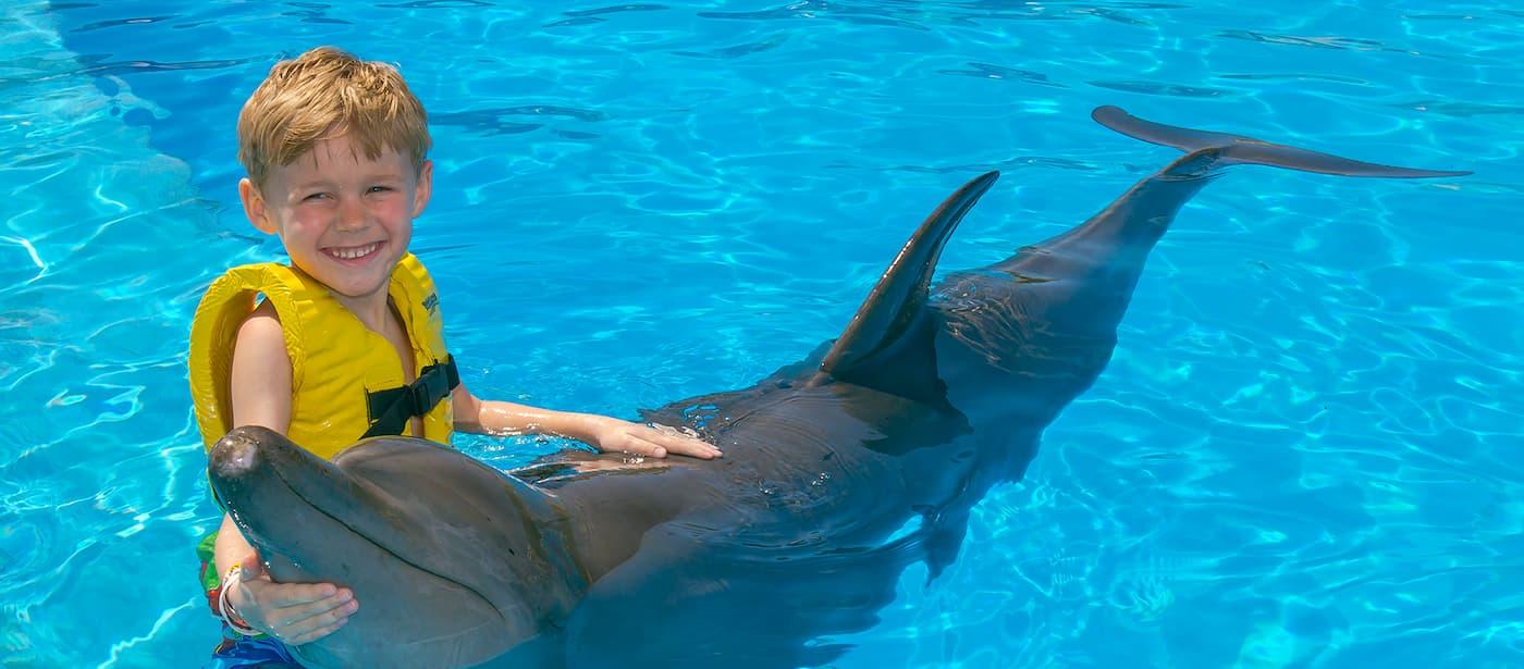 2 programas de nado con delfines para disfrutar en Dolphinaris