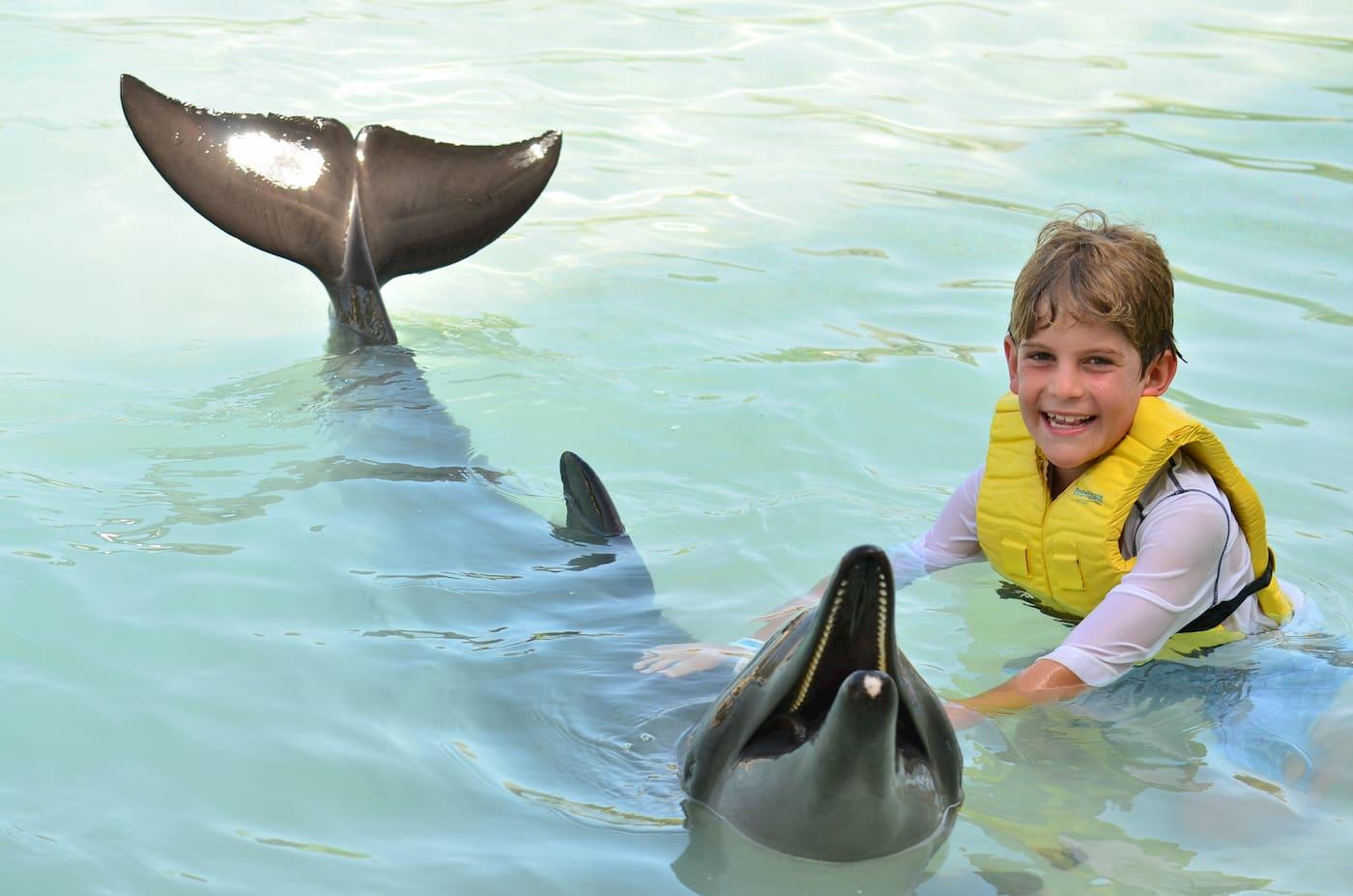 ¿Cómo cuidarse del sol sin dañar a los delfines?