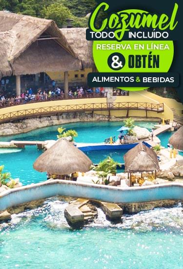 Experiencias con Delfines Todo Incluido en Cozumel México.