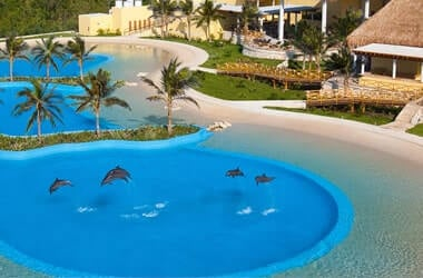 Swim With Dolphins At Riviera Maya Park Very Near to Playa del Carmen