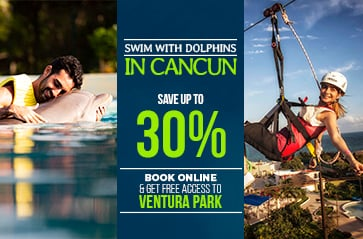 Swim with dolphins in Cancun + WaterPark