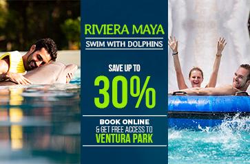 Riviera Maya dolphin swim