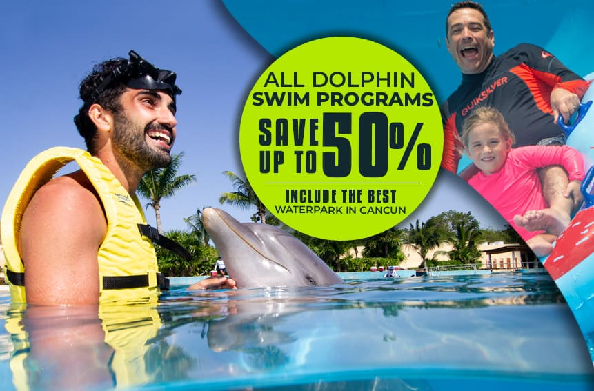 Dolphinaris Cancun Save Up To 50% All Dolphin Swim Programs