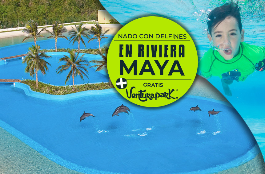 Nadar con Delfines en Riviera Maya más ENtrada Gratis a Ventura Park Cancún.