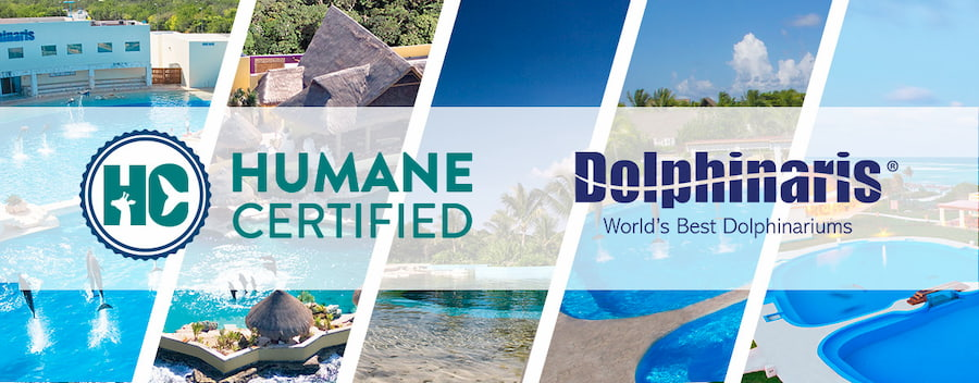 Dolphinaris receives certificate from American Humane Conservation for high care standards