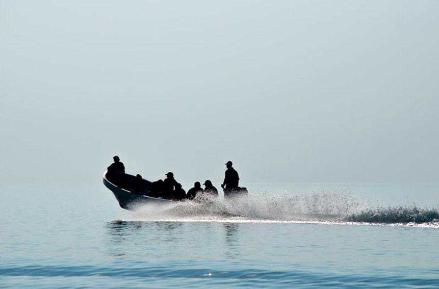 Dolphinaris Foundation Participates in Laguna de Términos en Campeche Project