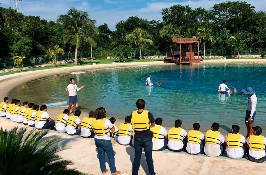 Estudiantes aprendiendo en Dolphinaris