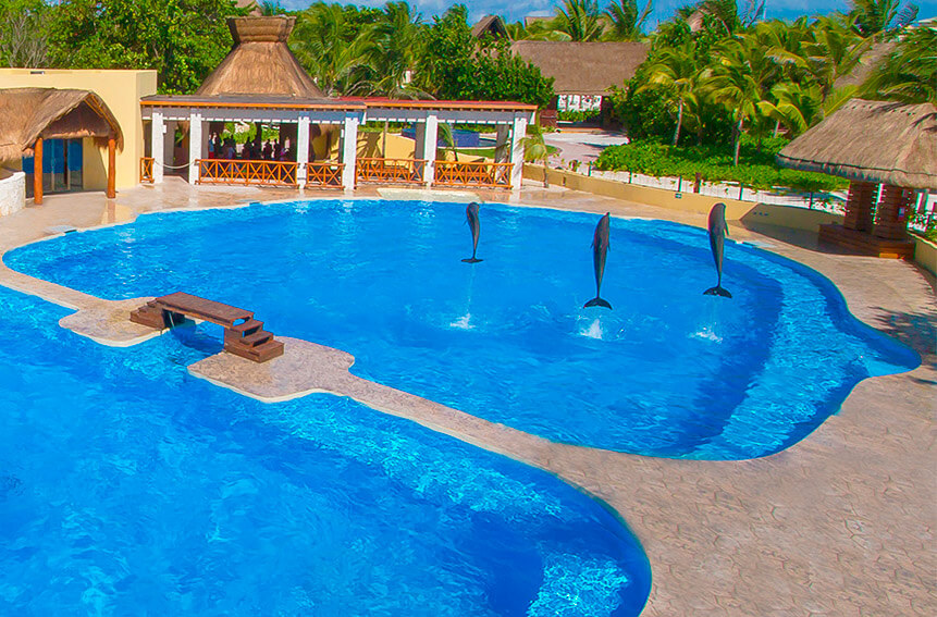 Barcelo Maya beach resort-puerto aventuras-Best Dolphinariums In the Mayan Riviera