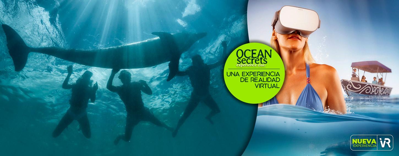 Ocean Secrets Una Experiencia de Realidad Virtual sólo en Dolphinaris