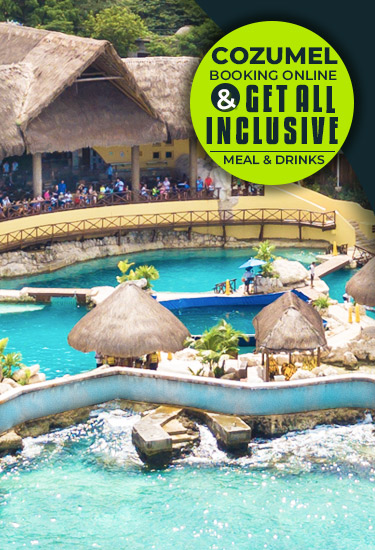 Book Online In Cozumel - Swim With Dolphins Plus All Inclusive Meals & Drinks