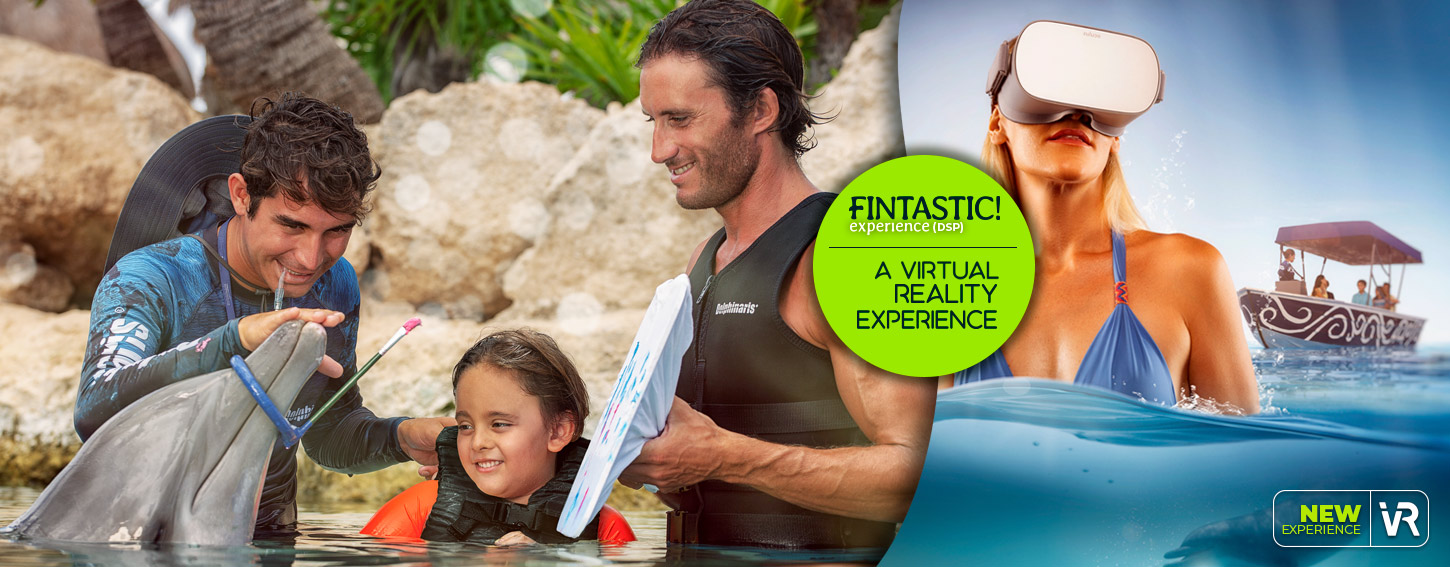 Be amazed by dolphins! The Fintastic Experience + Virtual Reality Journey
