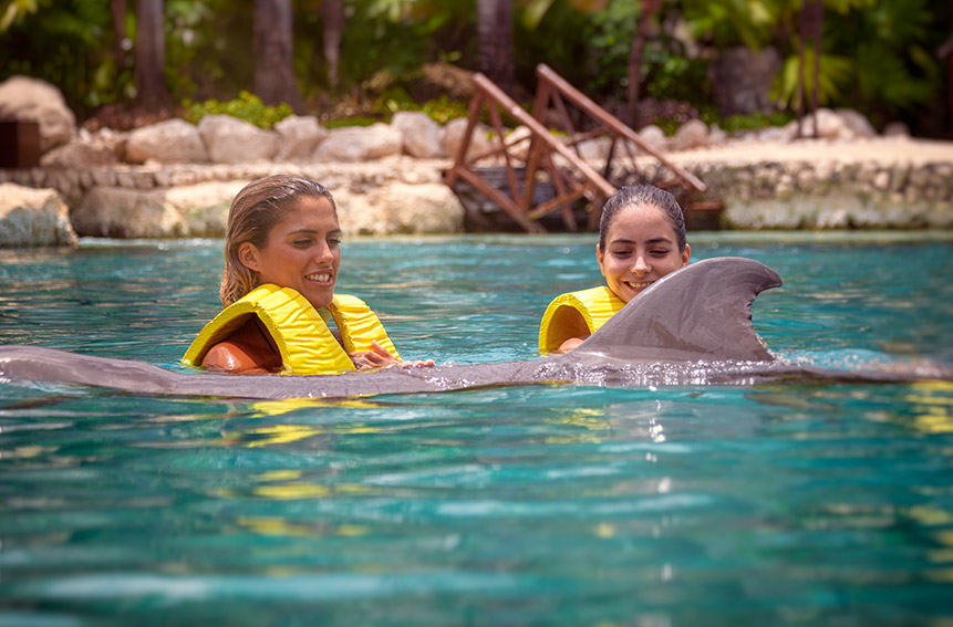 Dolphin Swim Fintastic with Carnival Cruise