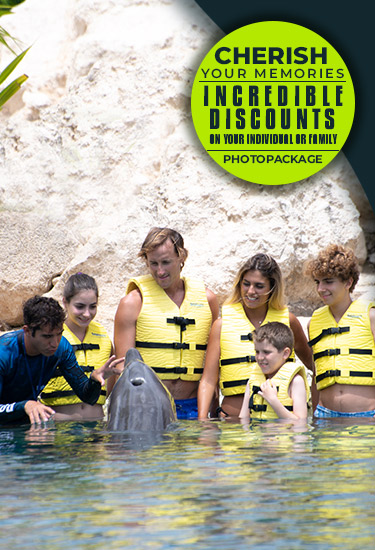 Incredible discounts in individual and group photo package.