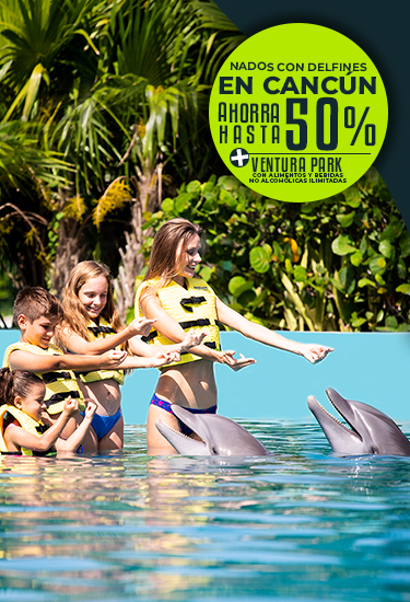 Swim WIth Dolphins In Cancun Plus Free Admission To Ventura Park with Unlimited Meals and Non Alcoholic Drinks