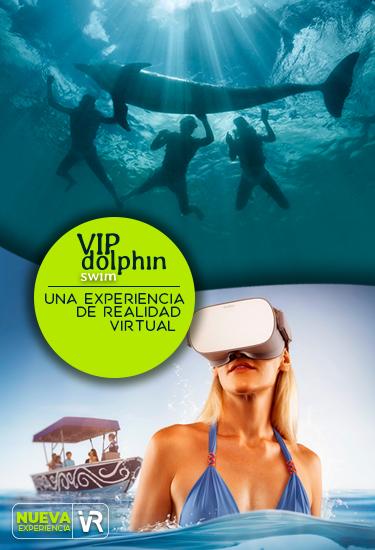 Emprende una aventura Dolphin VIP. En el paradisiaco ambiente tropical de Blu by Dolphinaris