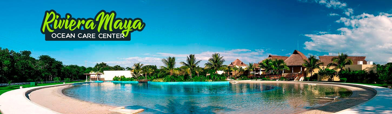 Swim with Dolphins near Playa Del Carmen At Dolphinaris Riviera Maya
