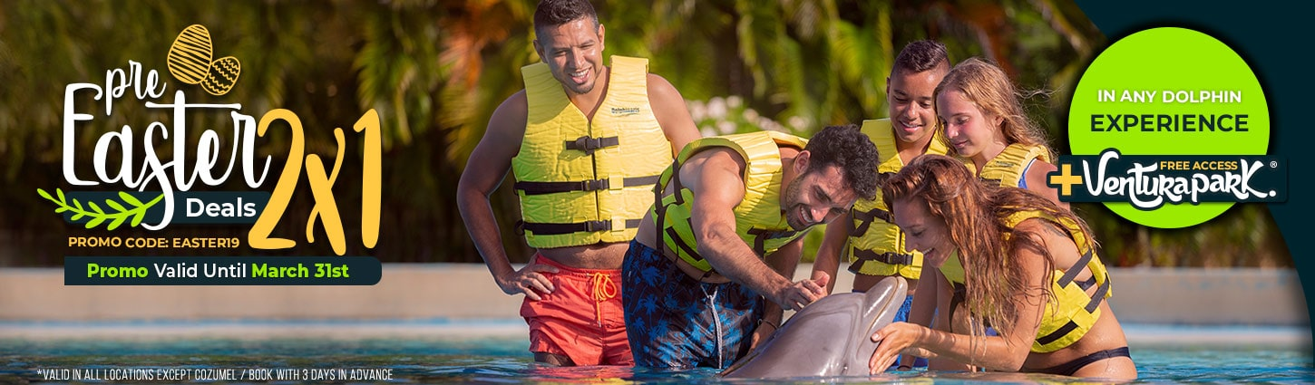Last Days! Pre Easter Deals Swim With Dolphins at Dolphinaris