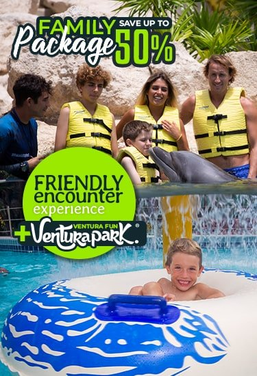 Family Package Swimming With Dolphins Discount
