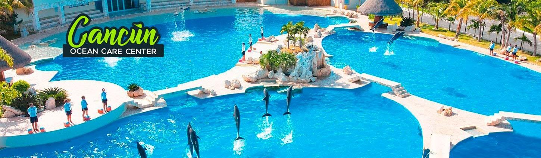 Nadar con Delfines en la Zona Hotelera de Cancún en Dolphinaris.