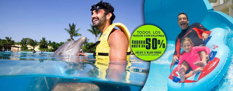 Nadar con delfines en Cancún - Descuentos Hasta del 50% Más parque acuático y de atracciones Ventura Park