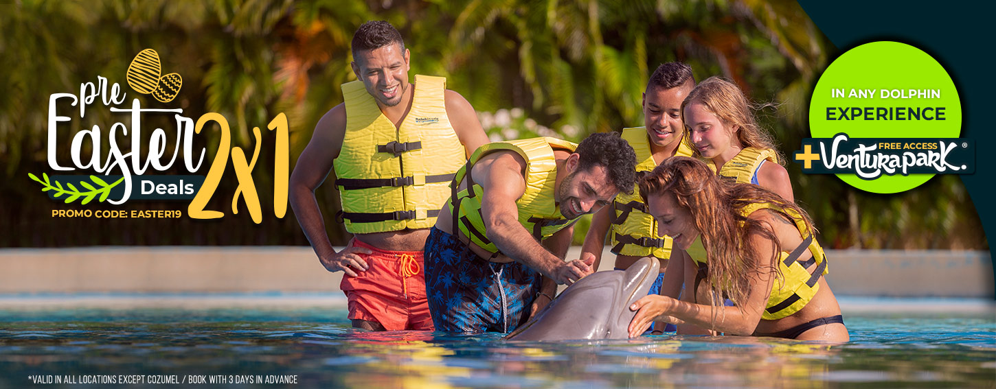 Pre Easter Deals Swim With Dolphins at Dolphinaris