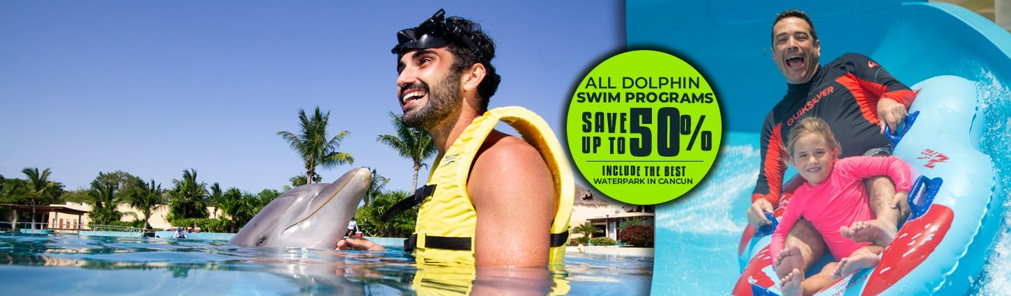 Swim With Dolphins in Cancun Save Up To 50% All Dolphin Swim Programs + Free Water Park