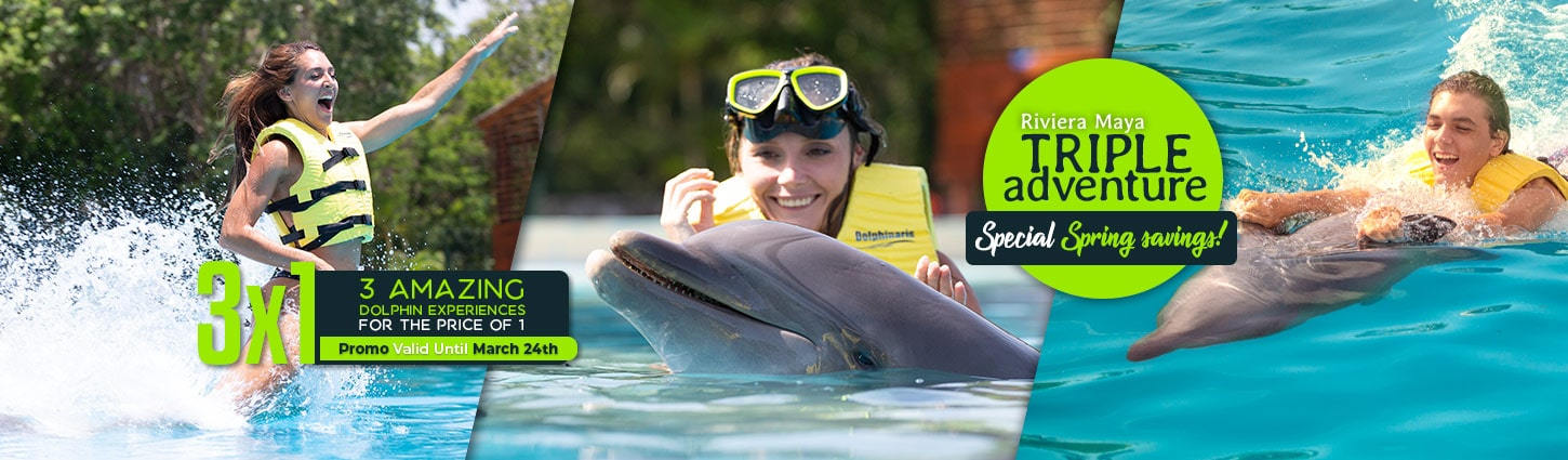 Triple Adventure at Riviera Maya - The most complete dolphin experience.