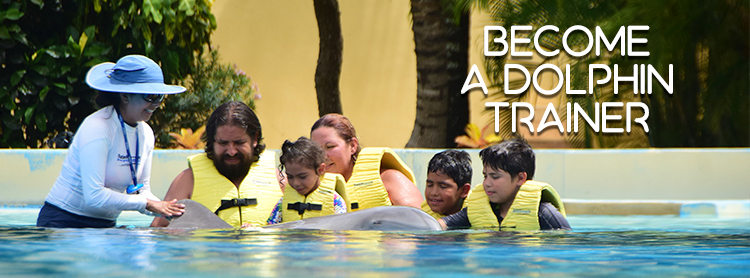 Dolphin Swim Experiences in Riviera Maya: Be a Dolphin Trainer.