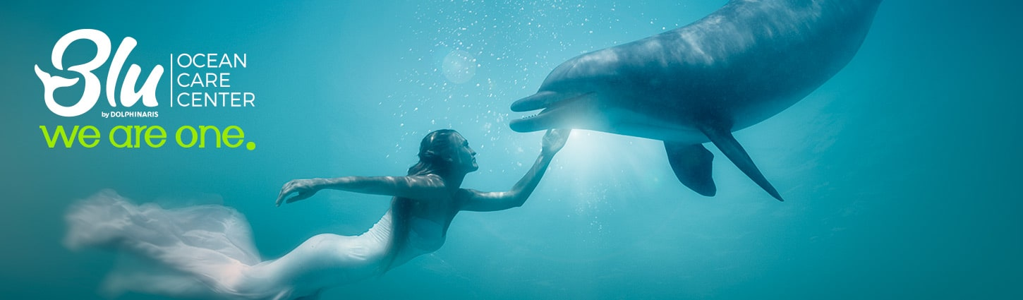 Swim with Dolphins Blu Ocean Care Center at Cancun and Riviera Maya