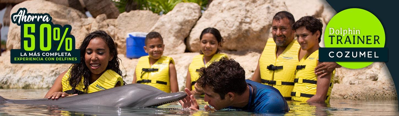 Conviértete en entrenador de delfines en Cozumel