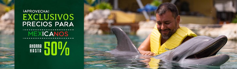 Precios con Descuento Para Mexicanos en Nado Con Delfines en Cancún