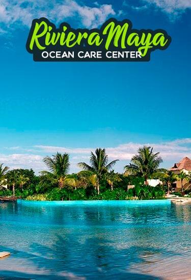 Nadar con Delfines en Riviera Maya, muy cerca de Playa Del Carmen.