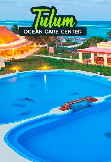 Swim With Dolphin In Tulum at Dolphinaris Tulum in The Bahia Principe Hotel.