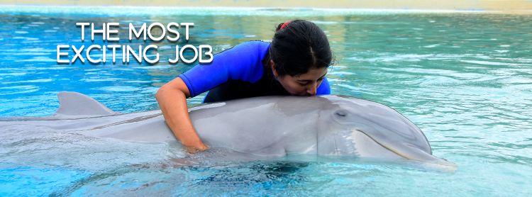 Earth's MOST Exciting Job is… being a Dolphin Trainer in Riviera Maya!