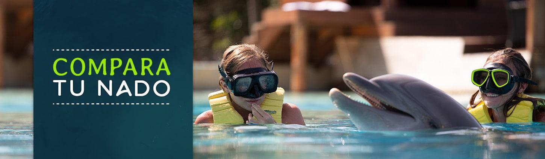 Compara Tu Experiencia de Nado Con Delfines en Dolphinaris