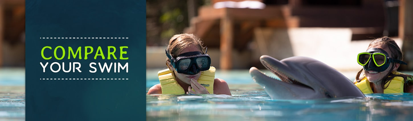 Compare Your Dolphin Swim Experiences at Dolphinaris