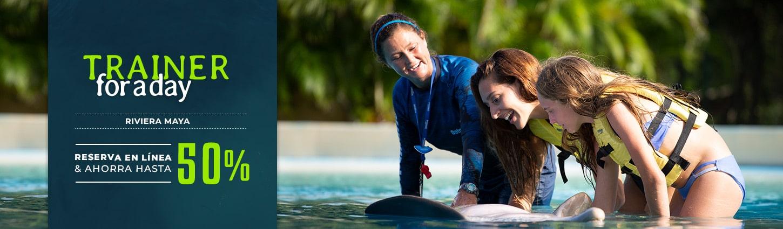 Experiencia Entrenador Por Un Día en Dolphinaris Riviera Maya