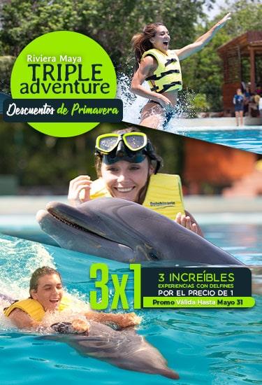 Triple Adventure Riviera Maya - La Experiencia con Delfines Más Completa.