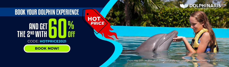 Hot Price 2021