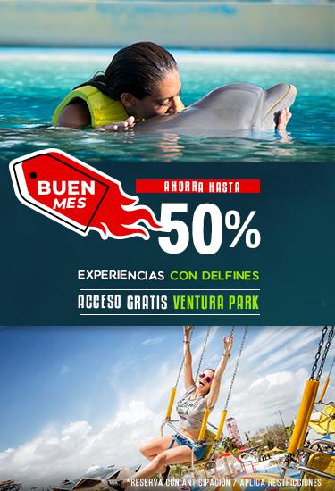 Disfruta de nadar con delfines con hasta el 50 % de descuento