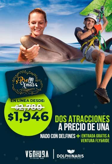 Delfines + Fly&Ride