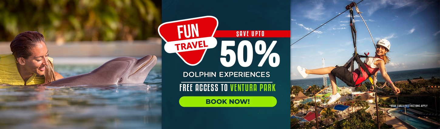 Save 50% swimming with dolphns