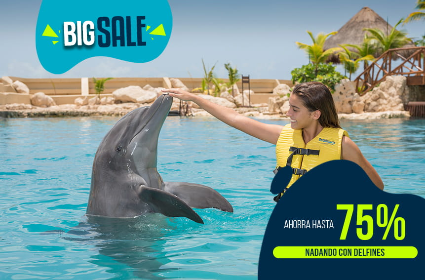 Mujer nadando con delfín