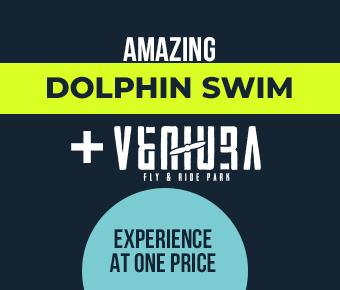 https://www.dolphinaris.com/ventura-fly-ride-dolphinaris/