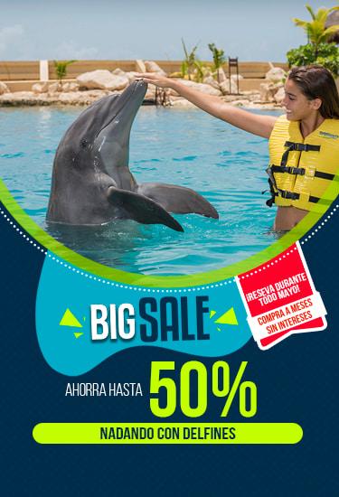 Promocion Big Sale