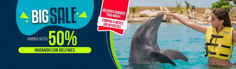 Dolphinaris Big Sale