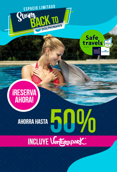 Nadar con delfines en Cancun