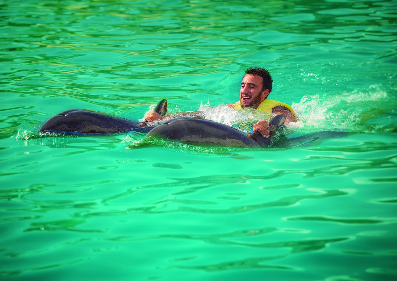 Man swimming with Dolphins