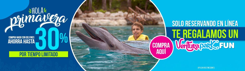 Joven nadando con delfín